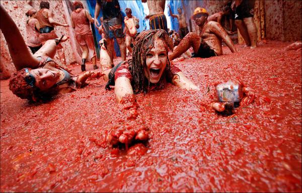 битва томатов