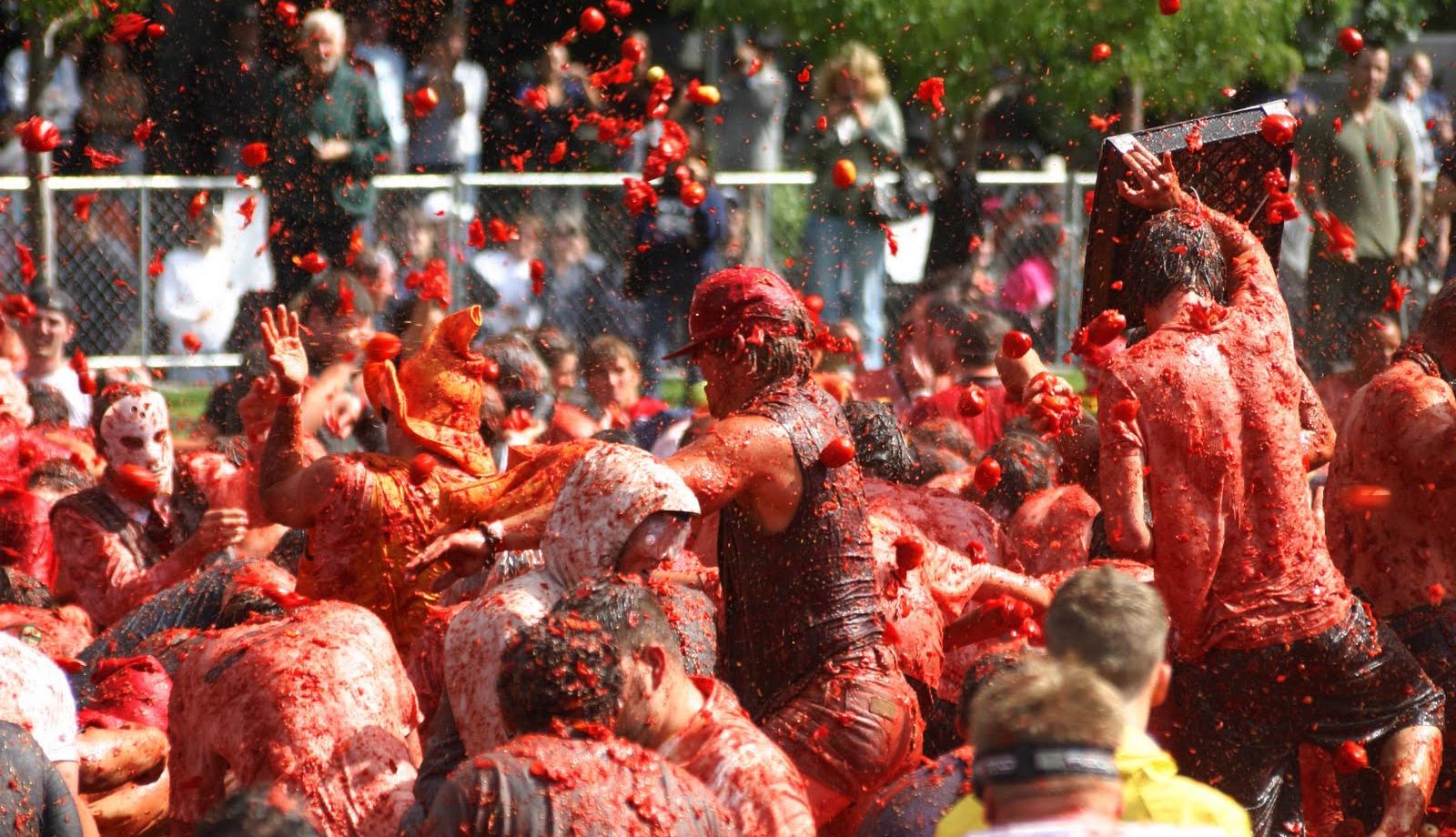 праздник помидоров в испании