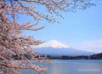 гора Фудзи достопримечательности Японии