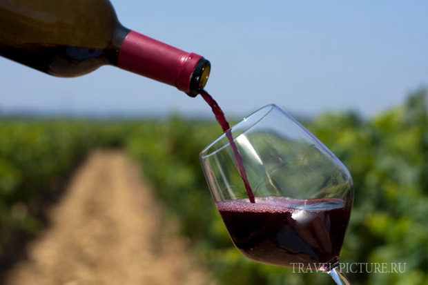 дегустация вина La winery