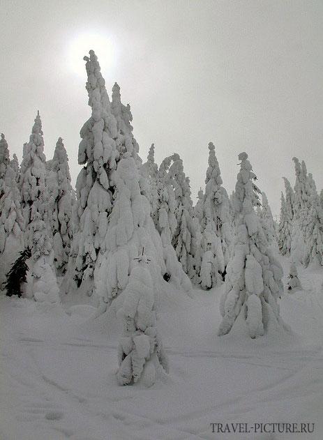 сезон катания на горных лыжах в Сербии