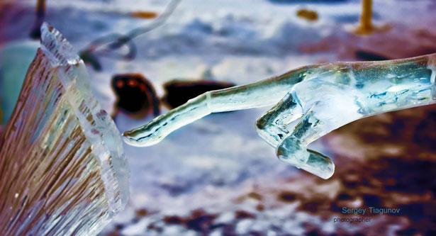 конкурс ледяных скульптур Хрустальная нерпа