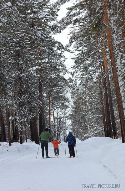делаем правильный выбор всех видов беговых лыж