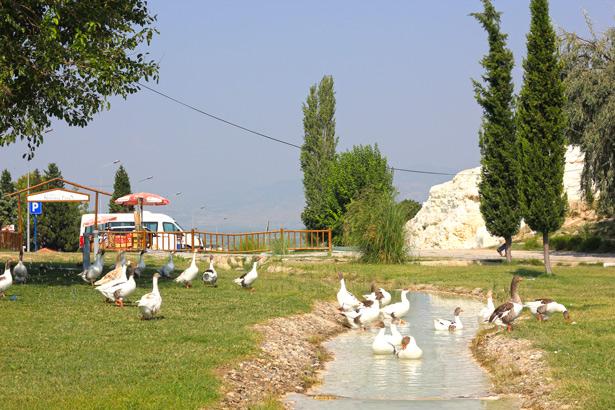 Когда в Турции отдыхать дешево