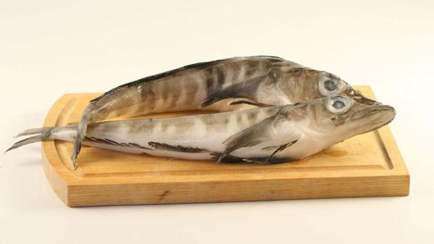 Приготовление ледяной рыбы (гуннара)