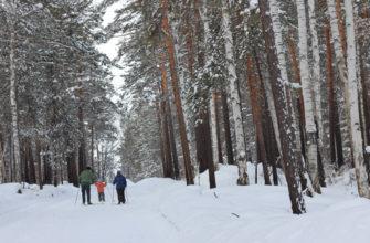лыжные базы Иркутска|динамо исхи академгородок