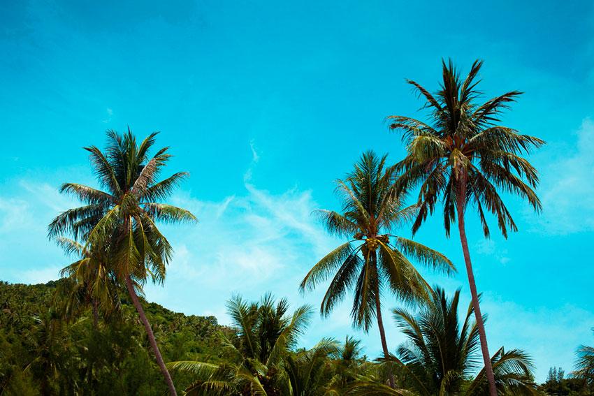 сезоны отдыха в таиланде