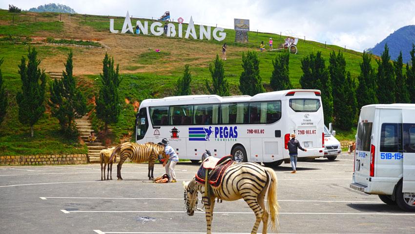 гора Lang Biang во Вьетнаме
