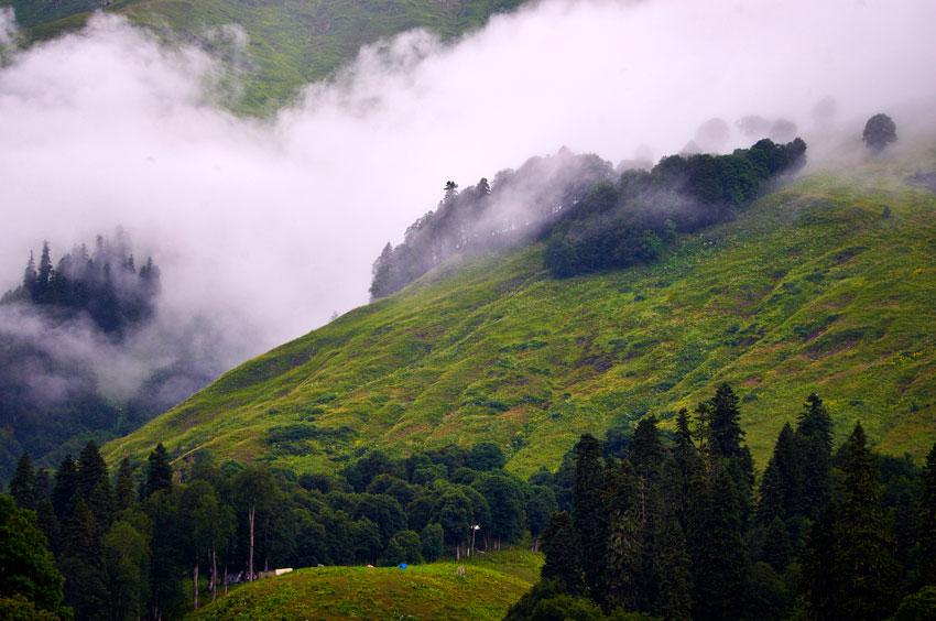 Стоимость отдыха в Абхазии летом