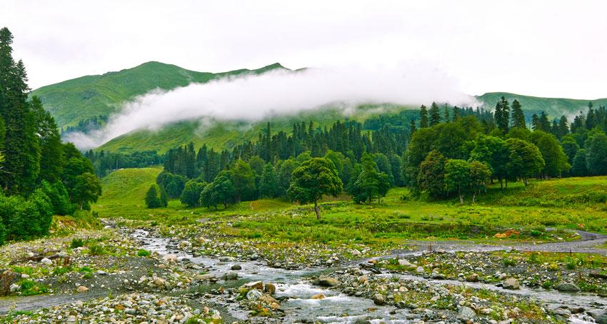 Отдых в Абхазии летом 2016 недорого