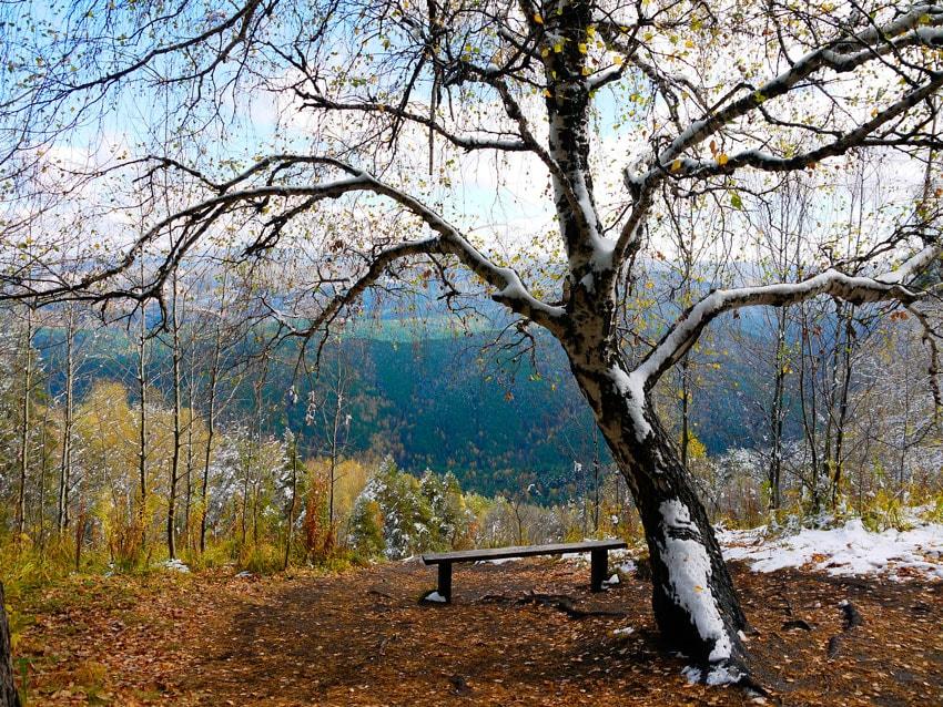 курорт Белокуриха цены на отдых