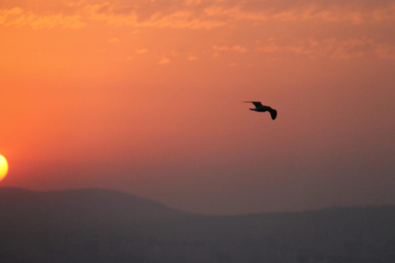Цены на летний отдых в Кабардинке