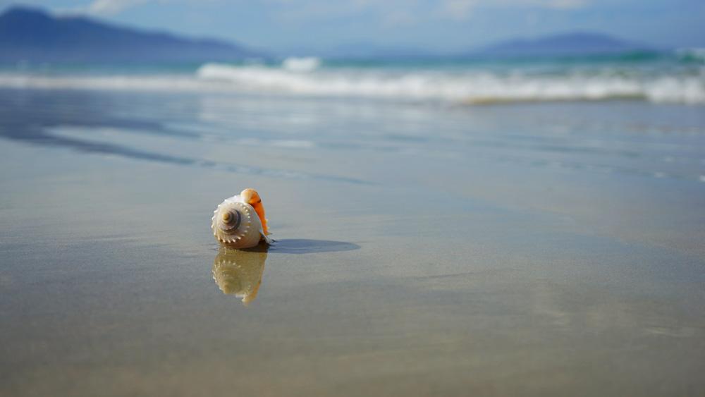 Отдых в августе на море, куда поехать