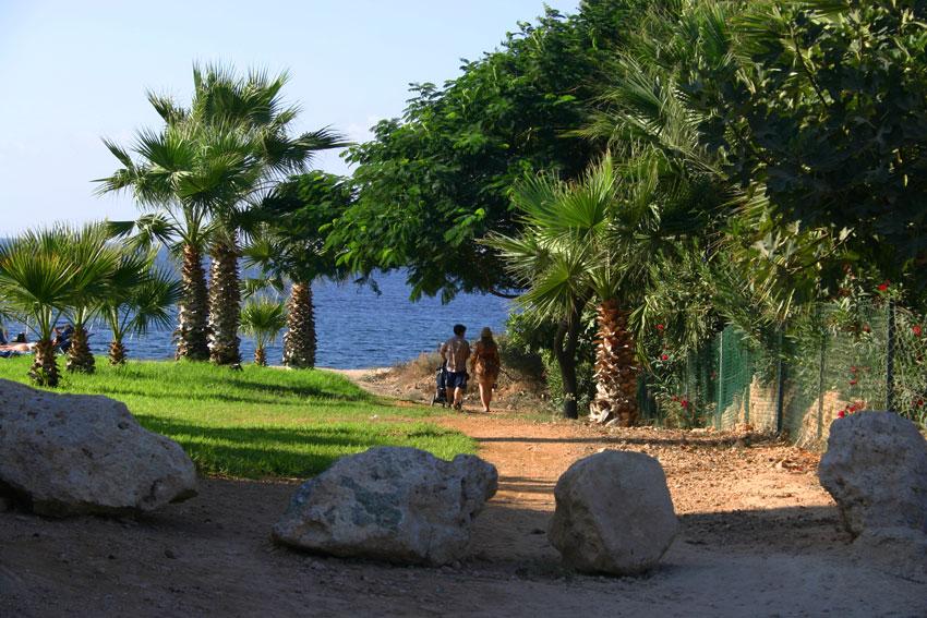 Отдохнуть летом на Кипре с детьми