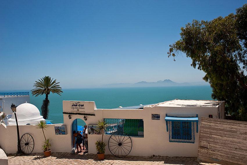 Отдых в Тунисе цены на отели