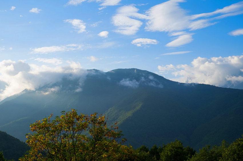 Забронировать недорого отели Сочи в горах на Красной Поляне