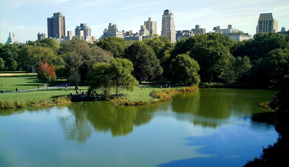 проспект парк нью-йорк описание