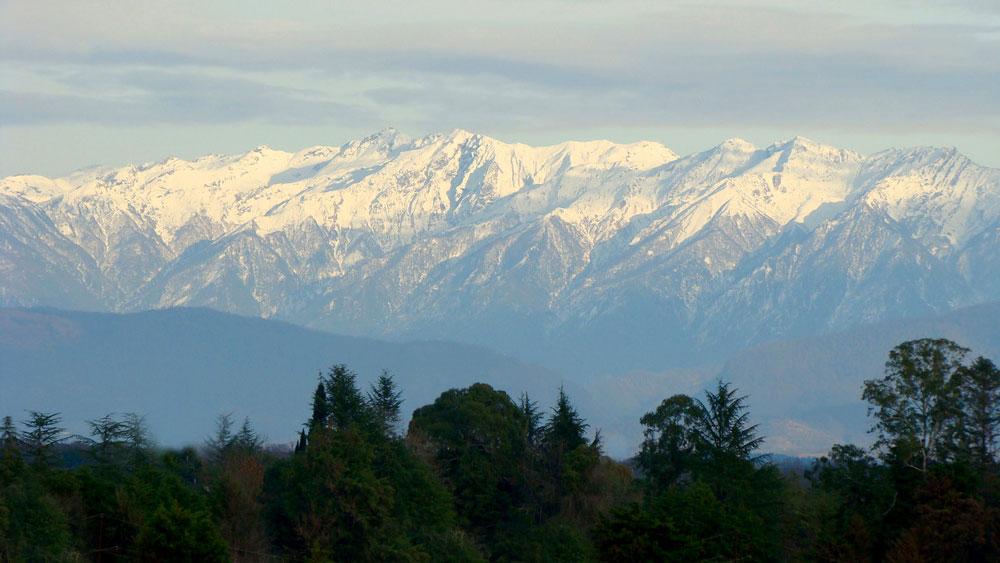 отдых зимой в Абхазии