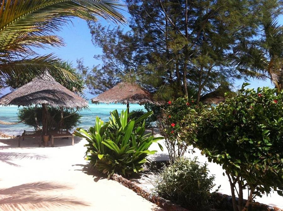 лучшие отели Nungvi