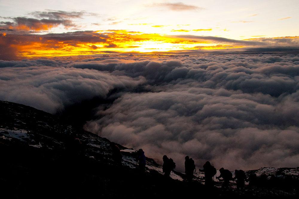 как добраться до Килиманджаро