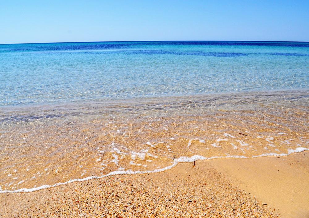 стоимость поездки самостоятельно на море