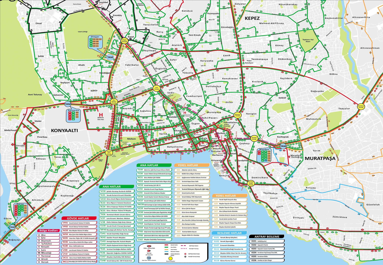 карта общественного транпорта