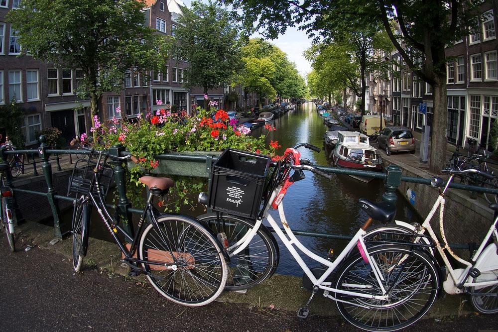 Прямой рейс до Амстердама, стоимость