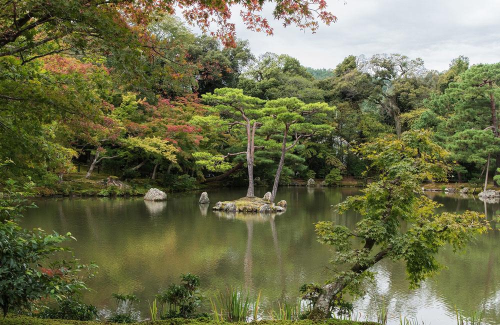 Поездка в Японию, цены