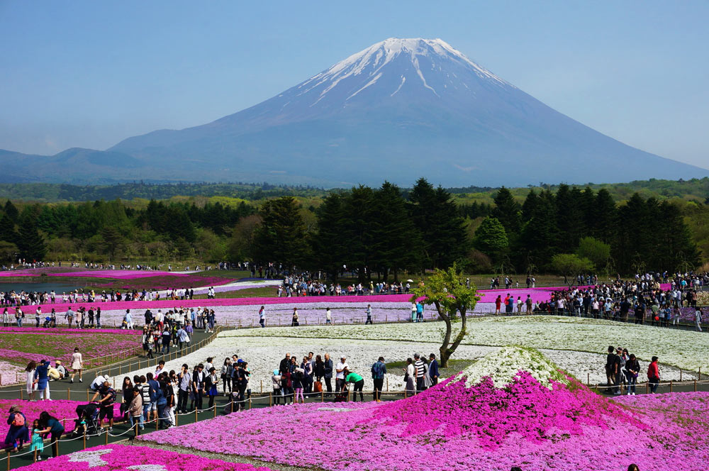 Лучшие отели Японии 5 звезд