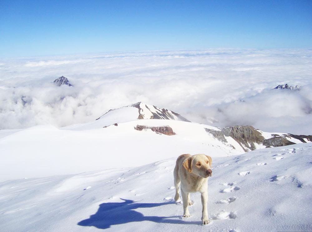 Где отдохнуть на Новый год в горах