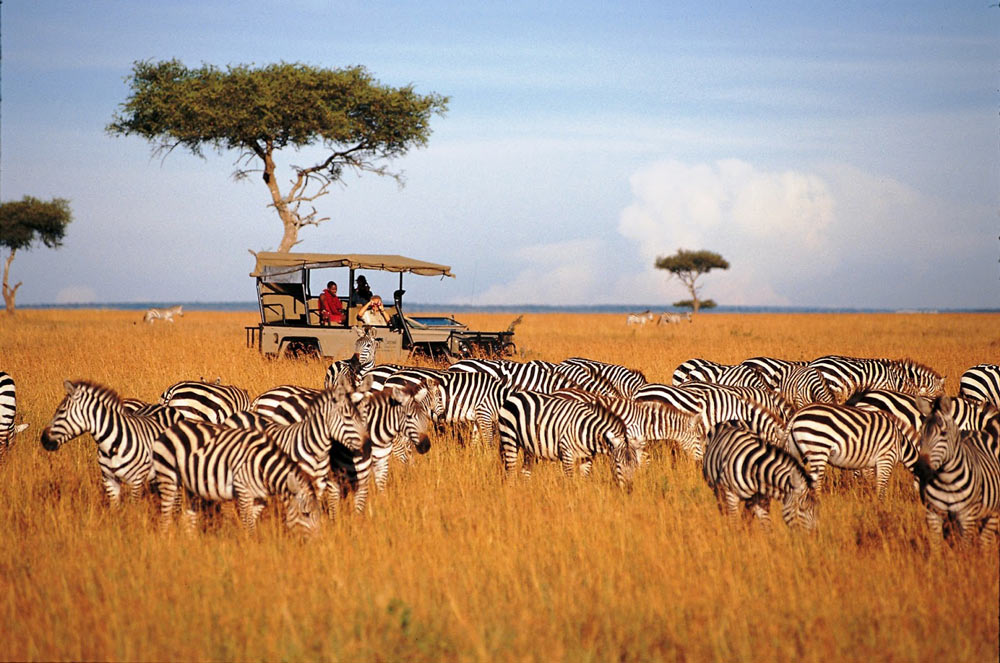 Цены на путевки в Кению