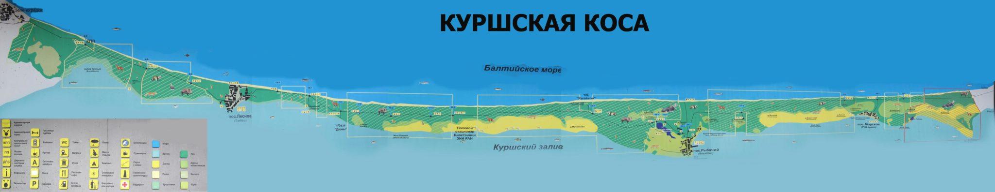 карта куршской косы калининградской области