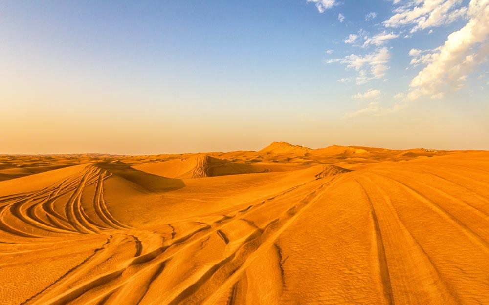 Выездная программа по пустыне