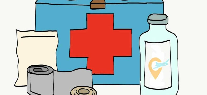 что взять из лекарств в поездку