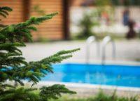 базы отдыха в краснодаре с бассейном