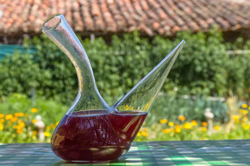 куда наливать испанское вино