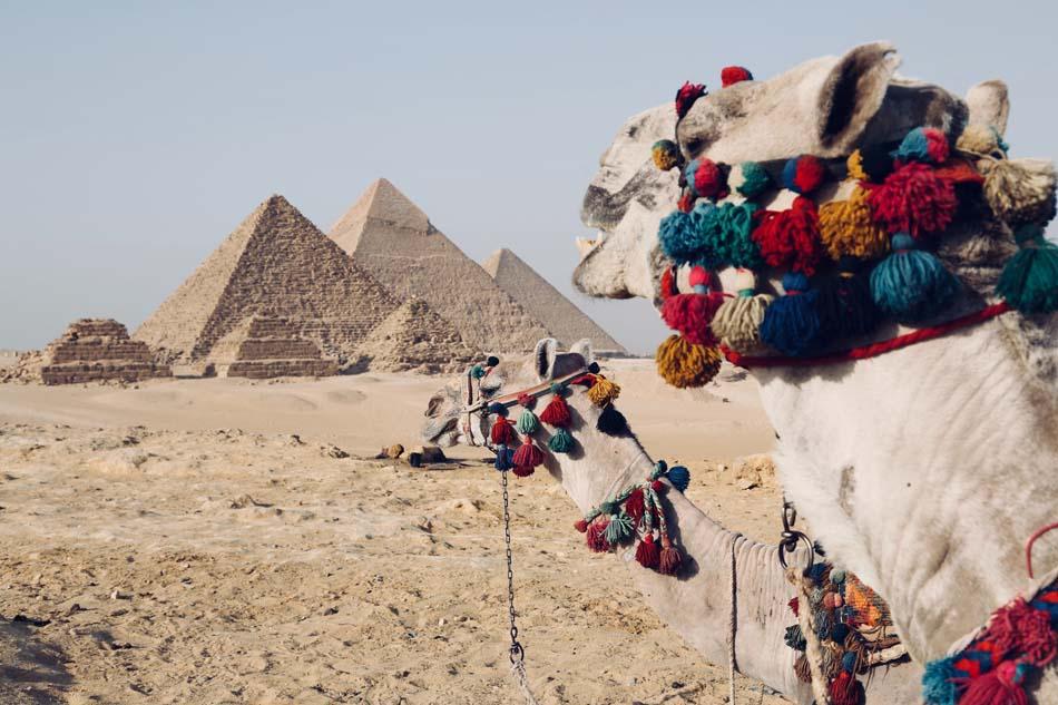 Отдых в Египте летом
