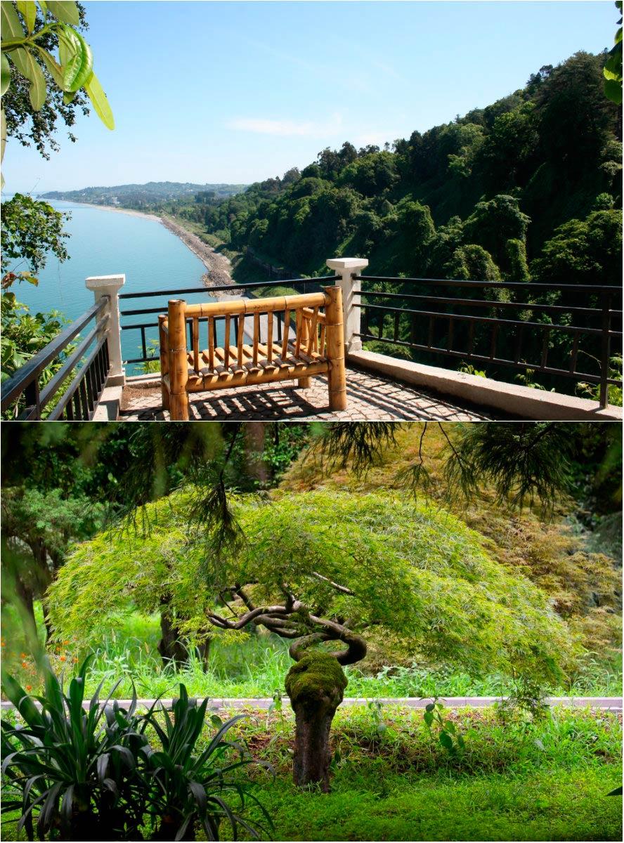 Ботанический сад (Батуми)