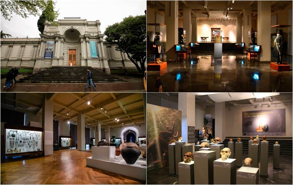 Грузинский национальный музей (Тбилиси)