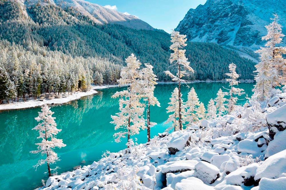 Отдых на Алтае на Новый год 2020-2021