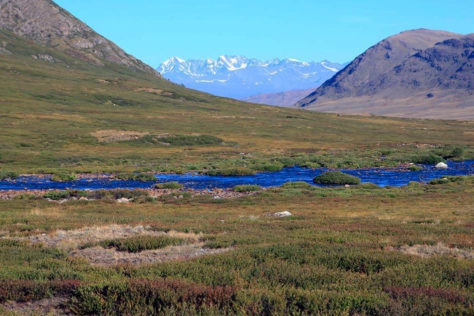 Речка в долине